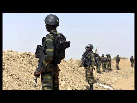 Cameroon Pledges More Troops Against Boko Haram