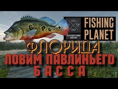 ловля большеротого басса в fishing planet