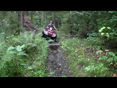 Bobby Rahal Acura on Richa On Atv Honda Trx 500 Fa  Summer Edition