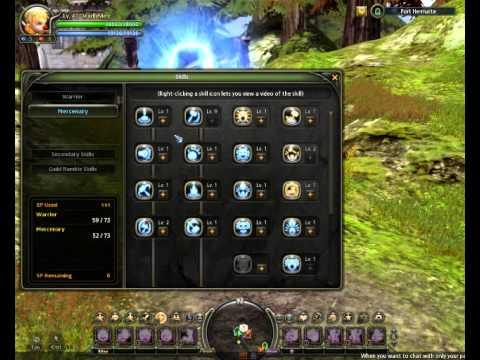 Dragon Nest Mercenary Skill