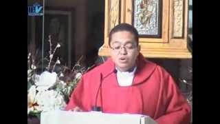 HOMILIA - San Lucas evangelista SABADO XXVIII semana del TO Ciclo A