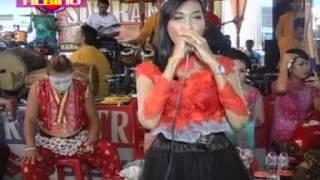 download lagu Suket Teki Ne Supra Nada Live Ploso gratis