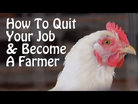 Quit Your Job and Farm - PART 1 - 10 Small Farm Ideas. from Organic Farming to Chickens & Goats.