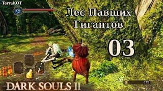 Прохождение dark souls 2 за рыцаря