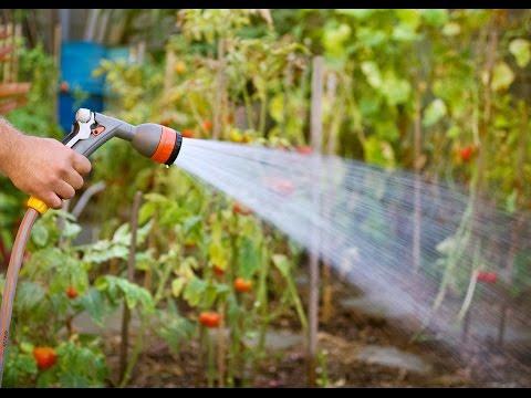 Hauswasserautomat Gardena | Tests & Kaufempfehlung