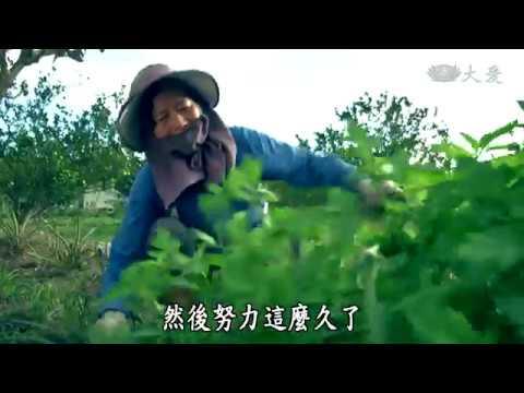 台綜-農夫與他的田-20190329 農業裡的女性力量