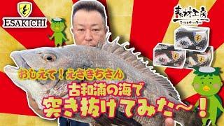 【おしえて!えさきちさん】古和浦の海でも突き抜けた!?
