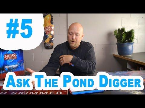 UV Filter, Moving Bed Waterfall Filters, Ponds Gone Wrong - Ask T.P.D. Show #5