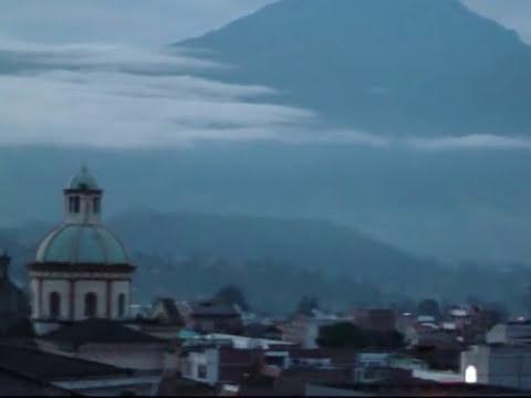 EL  CHINCHINAL  ( Olmedo Torres y Los Gatos) ECUADOR