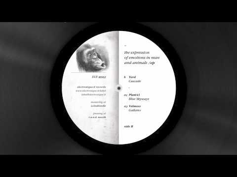 Yard - Cascade [ The Expression Of Emotions In Man And Animals Ep