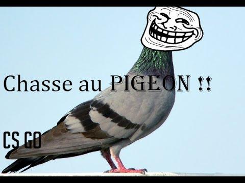 CS GO: Chasse au Kill/Pigeon