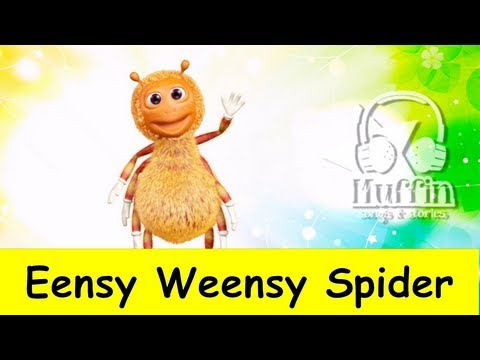 Muffin Songs - Eensy Weensy Spider  | nursery rhymes & children songs with l