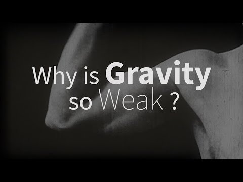 Why is gravity so weak? with Adam Archibald