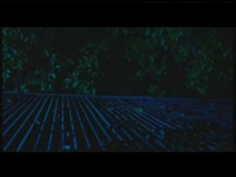 Dhivehi Film Ereyge Fahun 2