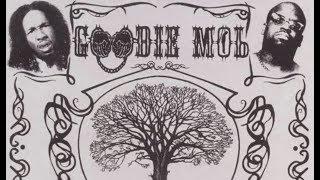 Watch Goodie Mob Beautiful Skin video