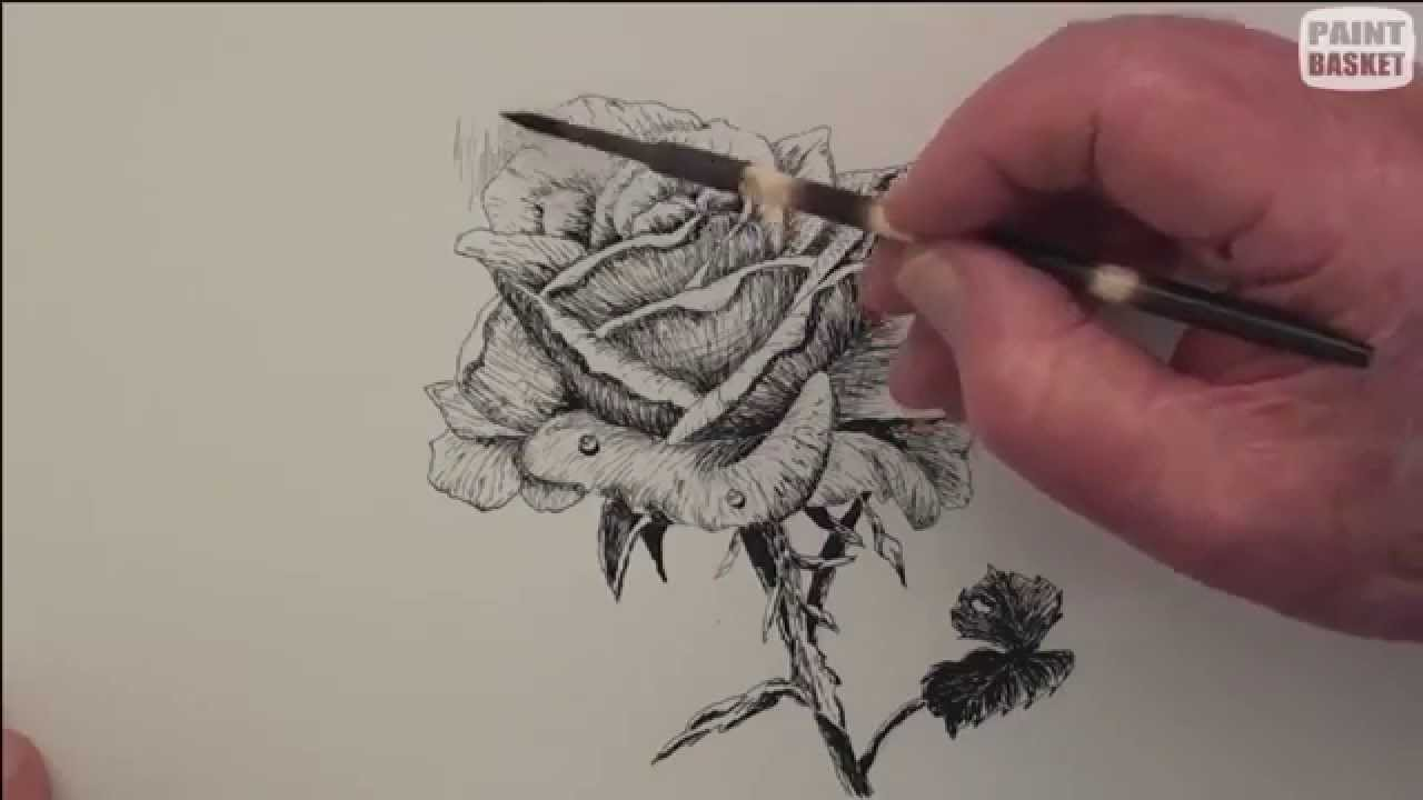 how to draw a rose in ...