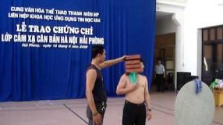 Biểu diễn hút đồ vật, bàn ủi, gạch - Cảm xạ học Việt Nam (1)