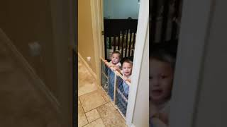Funny laughing babies