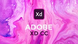 Adobe XD CC 2019 NEW Features!