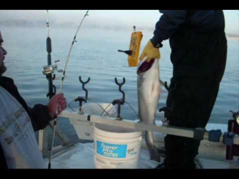 STRIPER FISHING on Lake Cumberland KY 1