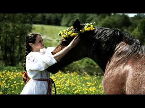 Мы с конем (Любэ)