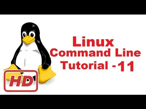 [Linux Command Line Tutorial] Linux Command Line Tutorial For Beginners 11 -  touch command