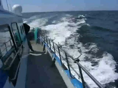 Crab fishing in half moon bay youtube for Half moon bay fishing report