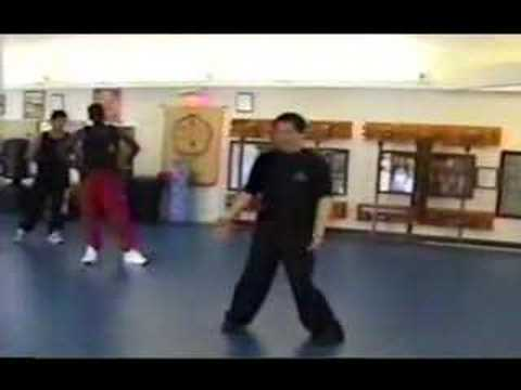 0 Wing Chun (TWC) basic training stance
