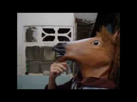 Horse's Fucking Day video