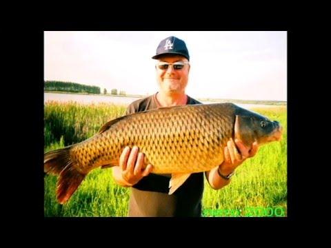 видео фидерная рыбалка на ахтубе