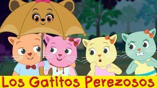 Los Gatitos Perezosos   Programa Comedia De Dibujos Animados Por Los Cutians   ChuChu TV