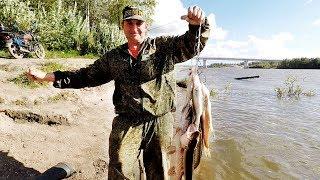 рыбалка на щуку на переметы