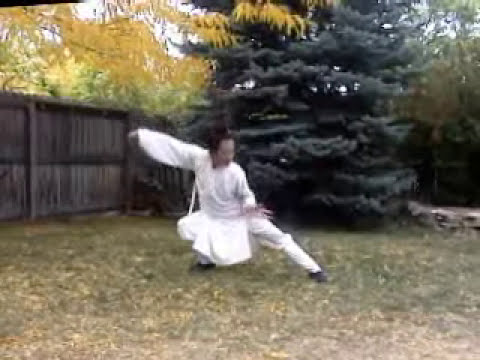 tai chi instructional video online