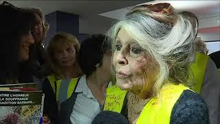 Brigitte Bardot Le 17 02 2019 Soutien Les Gilets Jaunes à Fréjus