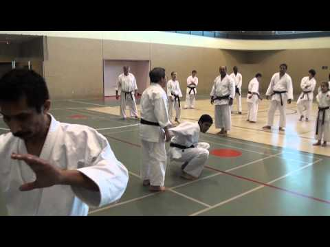 2010 Joint Shito Ryu Shotokan Karate-Do Training at UH Image 1