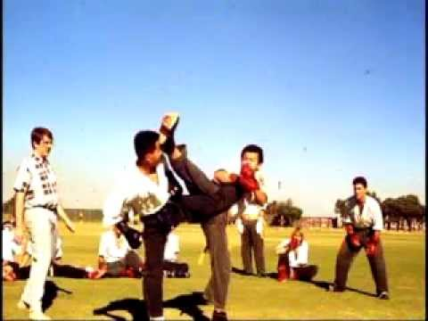 Martial Arts In The 1980s - Hwa Rang Do® Golden Age Image 1