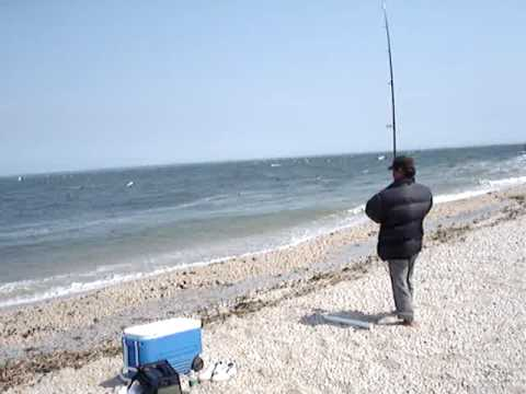 Long island sound fishing videos for Fishing on long island