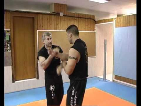JUN FAN TRAPPING JEET KUNE DO Image 1