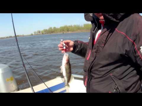 рыбалка на средней ахтубе в апреле