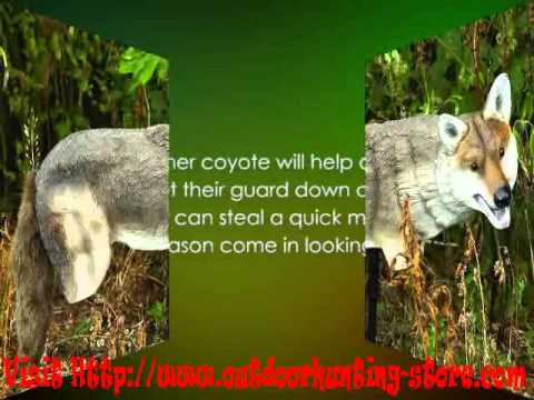 Edge Innovative Hunting Yote Coyote Hunting Decoy