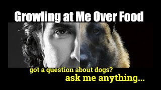 My Dog Growls at Me When I Try to Take Food Out of His Mouth - ask me anything - Dog Training
