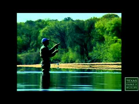 White Bass Fishing, Running of the Bass - Texas Parks and Wildlife [Official]