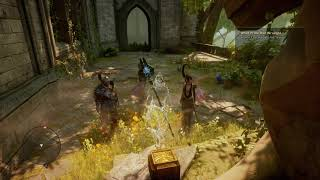 Dragon Age™: Inquisition Solas and Morrigan funny moment