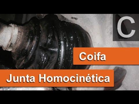 Dr CARRO Protegendo a  Junta Homocinética