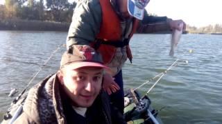 семикаракорск рыбалка на дону-прогноз клева