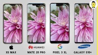 Samsung Galaxy S10+ vs Pixel 3 XL vs iPhone XS Max vs Mate 20 pro camera comparison: surprise!