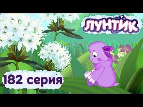 Лунтик и его друзья - 182 серия. Аромат