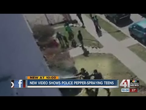 Video shows officers using pepper spray on group of...