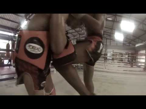 Thongchai Sitsongpeenong by Yokkao 50 KNEES Muay Thai training - twitter @yokkaoboxing Image 1