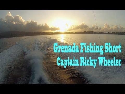 Grenada Fishing Short (January 2015)